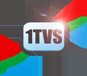 Первая Национальная Школа телевидения